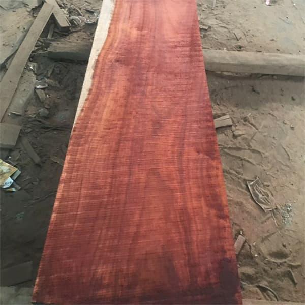 gỗ hương huyết nam phi