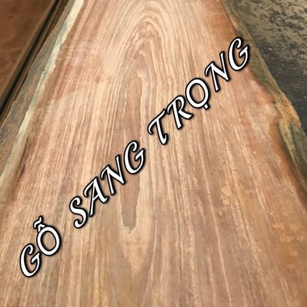 gỗ pachy
