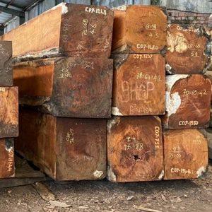 gỗ gõ đỏ Pachyloba hộp